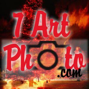 7art_square logo