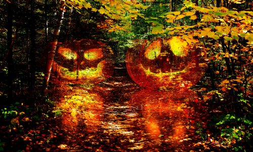 Halloween Scary Wood 1 - Stock Photos, Pictures & Images
