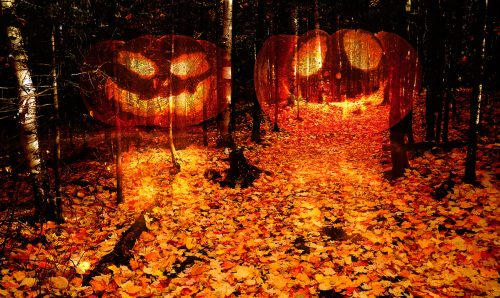 Halloween Scary Wood 2 - Stock Photos, Pictures & Images