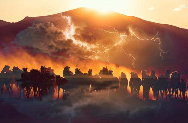 Horsepower HD Image