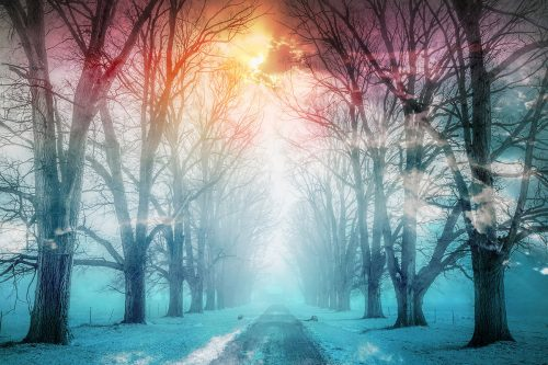Wintery Road 02 - Stock Photos, Pictures & Images